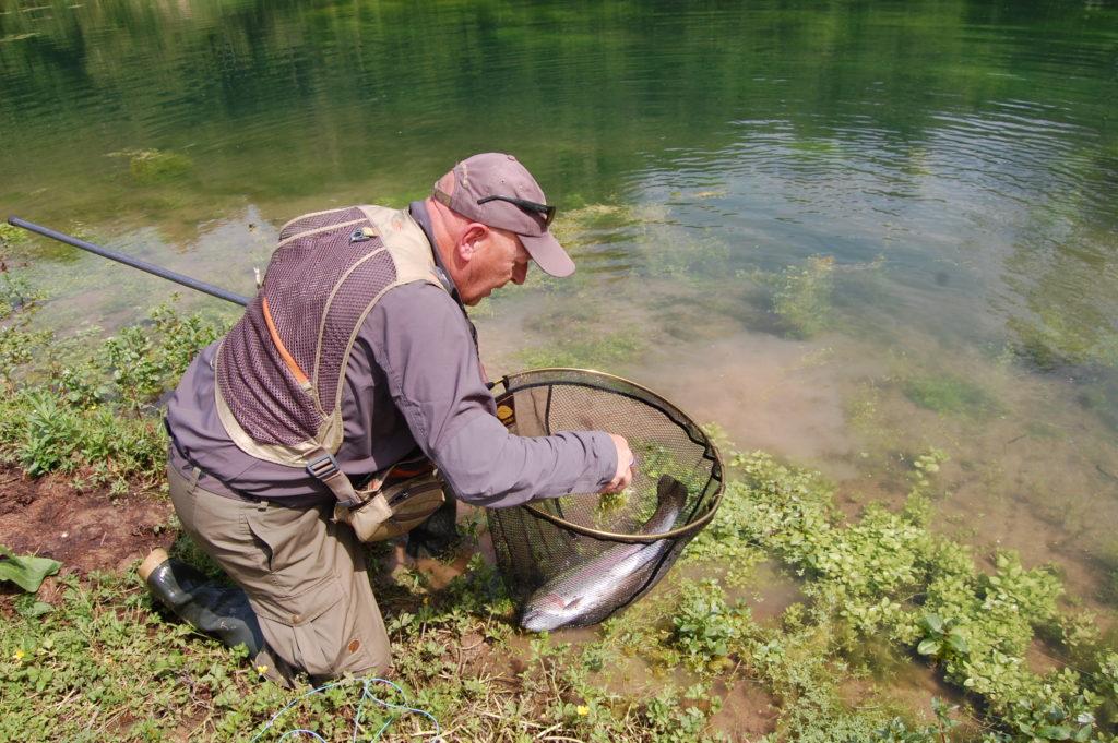 La Cascade- Fly Fishing- Lake - Catch